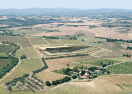 03_Stadio di Siena_1